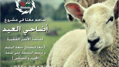 Photo of نداءات ناس الخير من أجل كبش للفقير